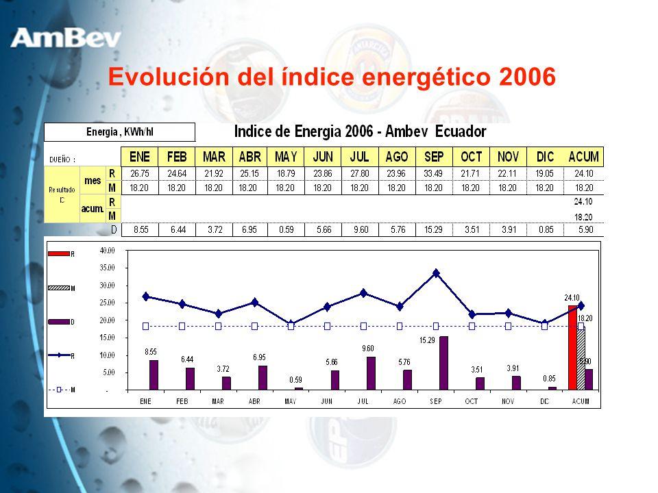 Evolución del índice energético 2006