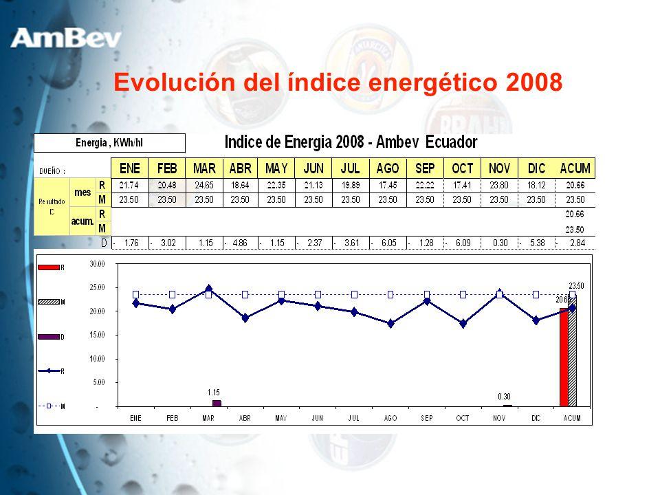 Evolución del índice energético 2008