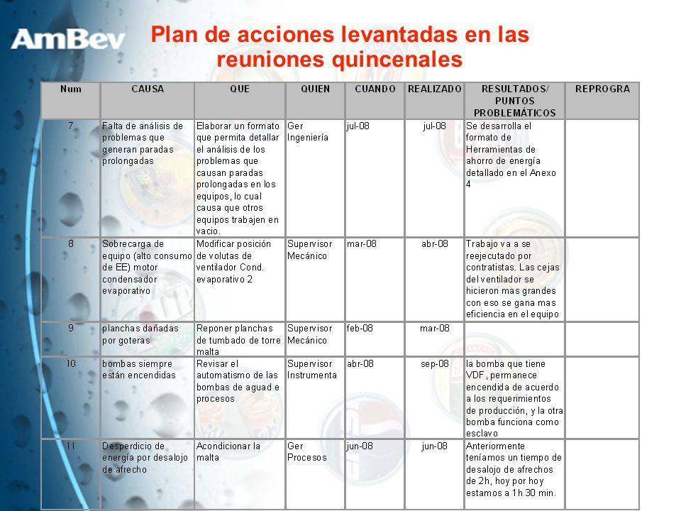 Plan de acciones levantadas en las reuniones quincenales