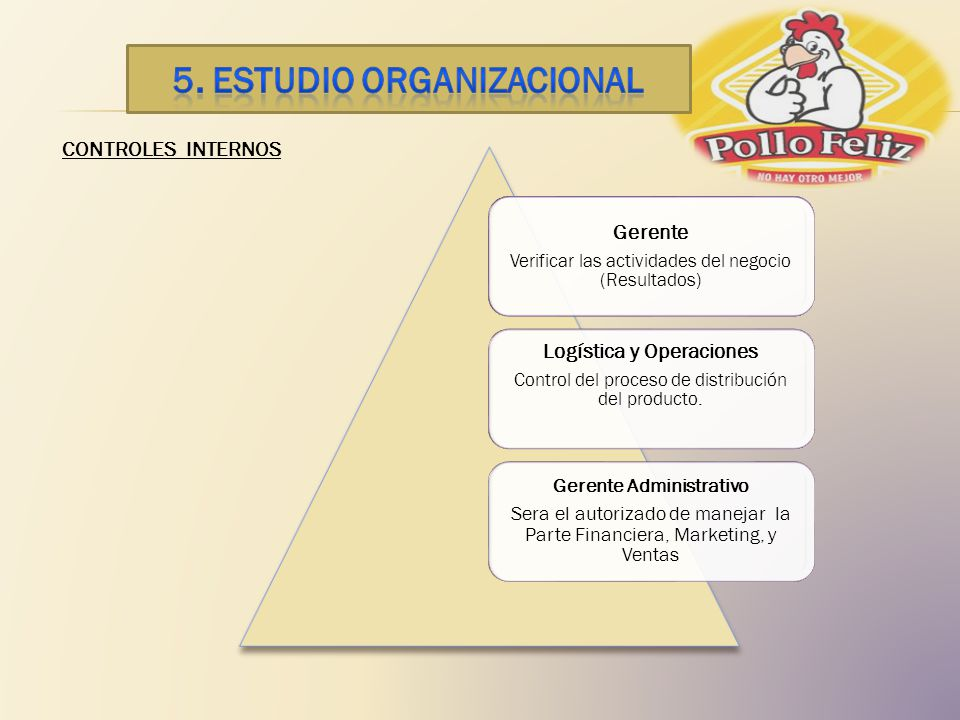 5. ESTUDIO ORGANIZACIONAL