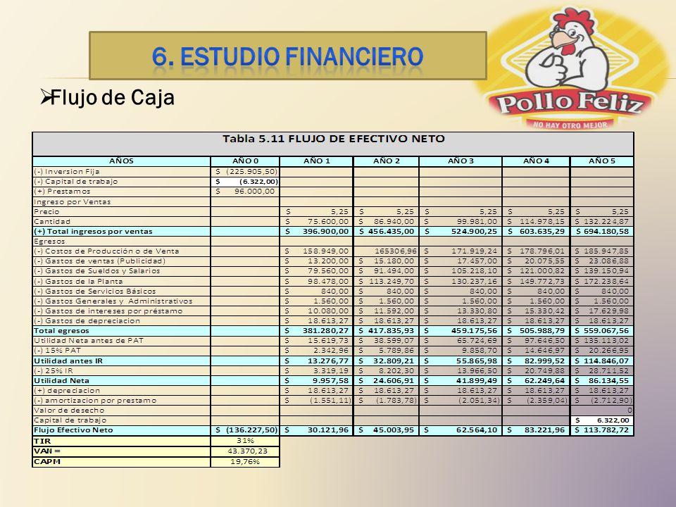 6. ESTUDIO financiero Flujo de Caja