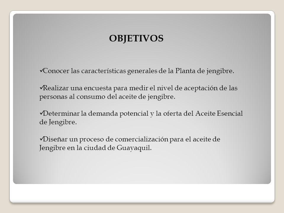 OBJETIVOS Conocer las características generales de la Planta de jengibre.