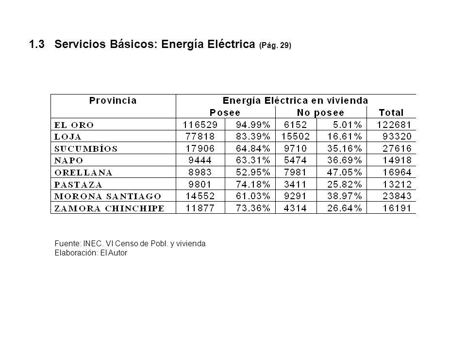 1.3 Servicios Básicos: Energía Eléctrica (Pág. 29)