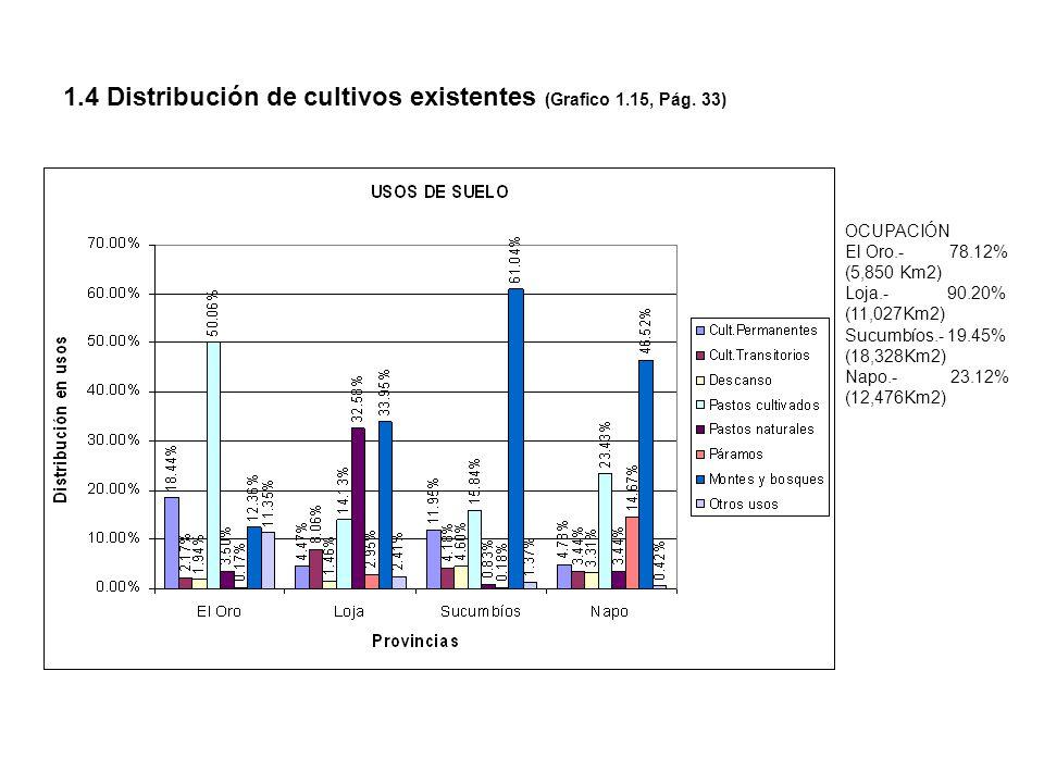 1.4 Distribución de cultivos existentes (Grafico 1.15, Pág. 33)