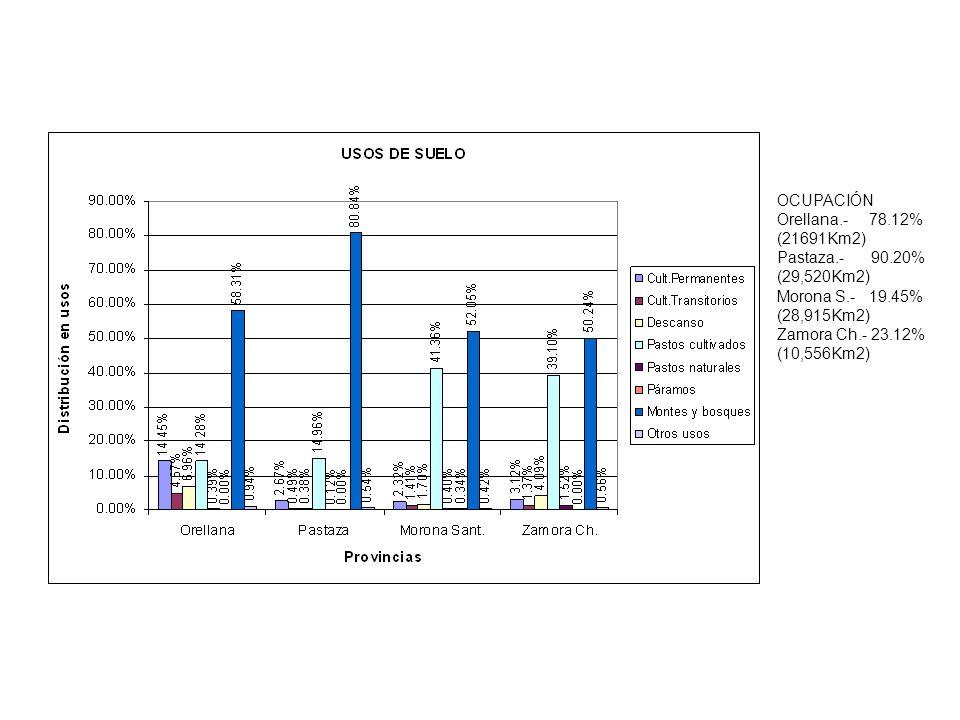 OCUPACIÓN Orellana.- 78.12% (21691Km2) Pastaza.- 90.20% (29,520Km2) Morona S.- 19.45%