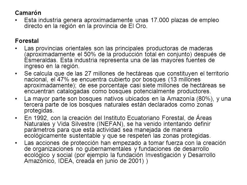 Camarón Esta industria genera aproximadamente unas 17.000 plazas de empleo directo en la región en la provincia de El Oro.