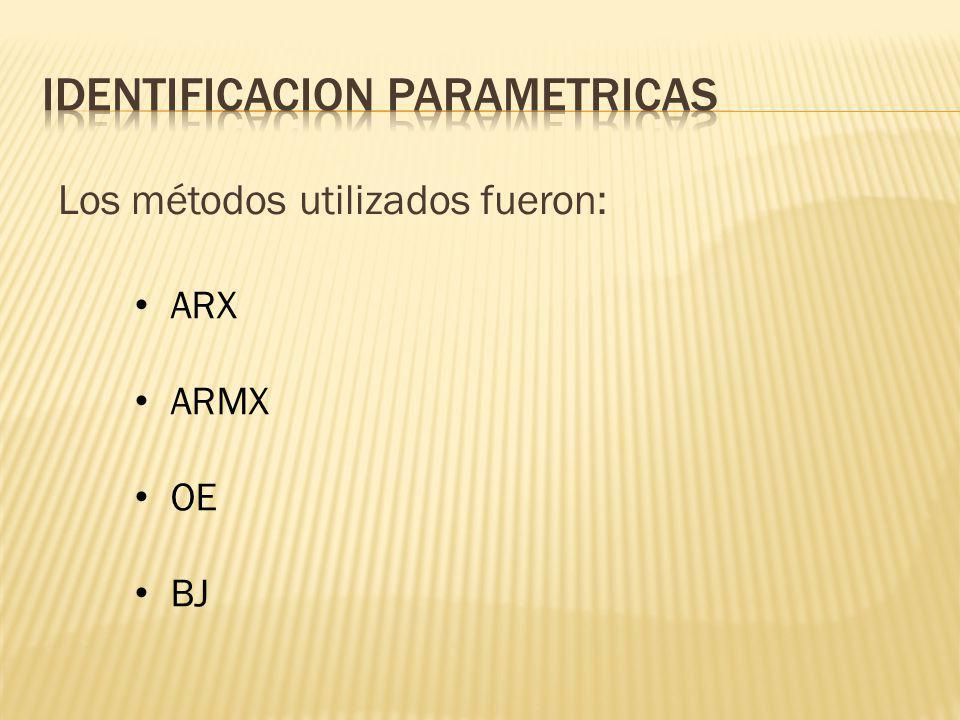 IDENTIFICACION PARAMETRICAS