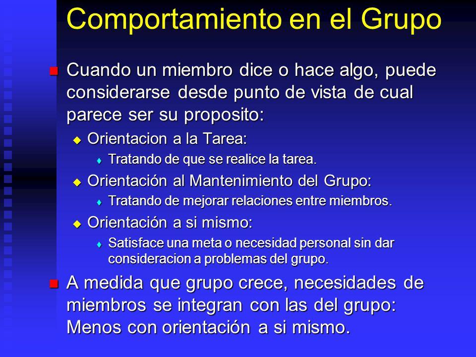 Comportamiento en el Grupo
