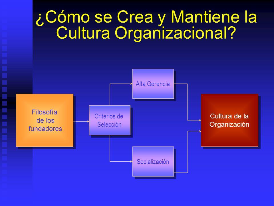 ¿Cómo se Crea y Mantiene la Cultura Organizacional