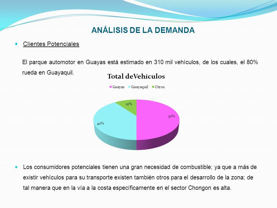 ANÁLISIS DE LA DEMANDA Clientes Potenciales