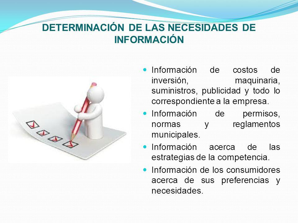 DETERMINACIÓN DE LAS NECESIDADES DE INFORMACIÓN