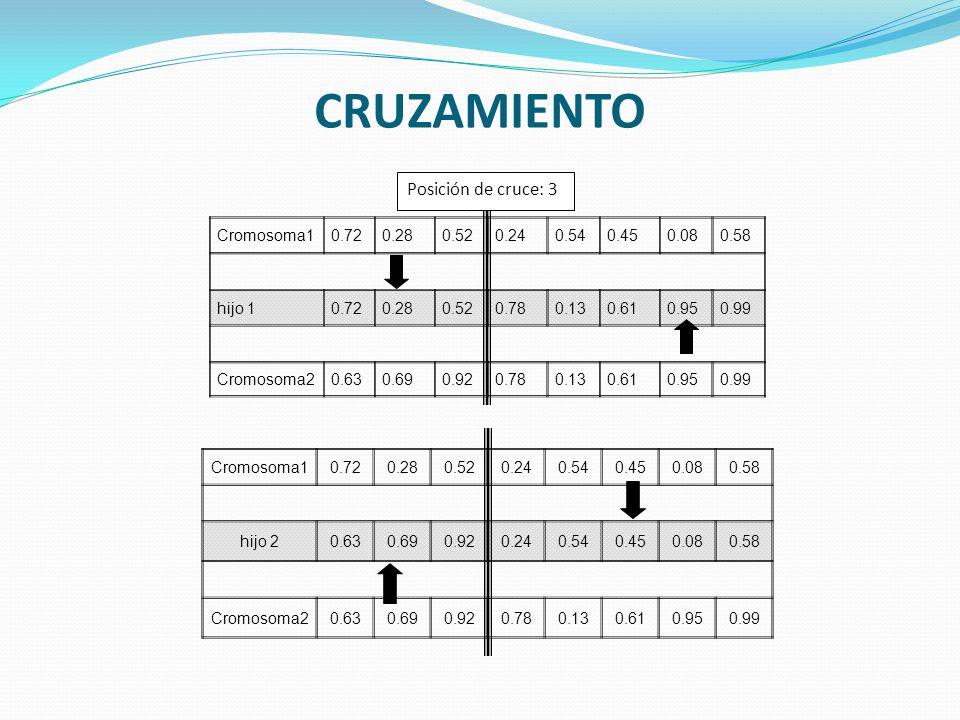 CRUZAMIENTO Posición de cruce: 3 Cromosoma1 0.72 0.28 0.52 0.24 0.54