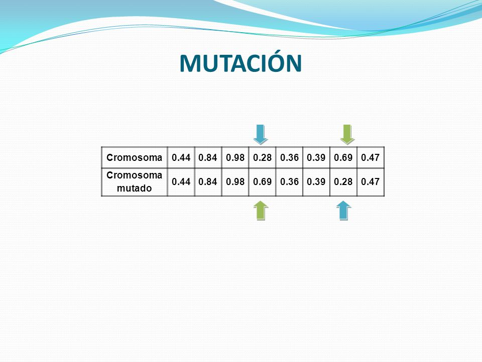 MUTACIÓN Cromosoma 0.44 0.84 0.98 0.28 0.36 0.39 0.69 0.47 mutado