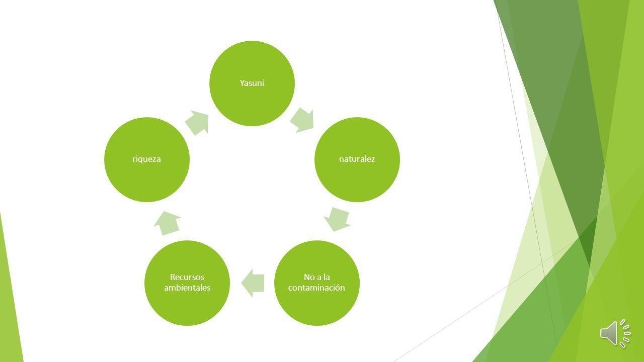 Yasuni naturalez No a la contaminación Recursos ambientales riqueza