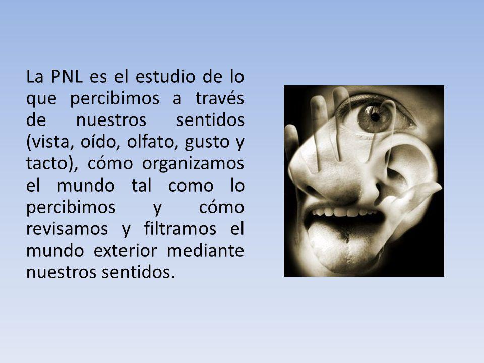 La PNL es el estudio de lo que percibimos a través de nuestros sentidos (vista, oído, olfato, gusto y tacto), cómo organizamos el mundo tal como lo percibimos y cómo revisamos y filtramos el mundo exterior mediante nuestros sentidos.