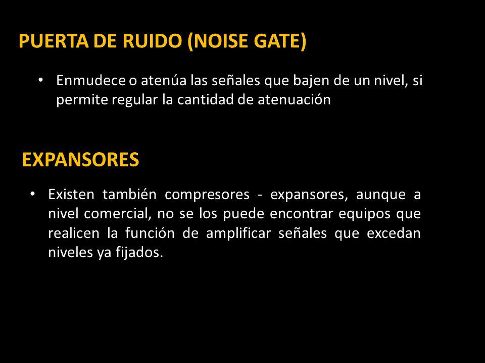 PUERTA DE RUIDO (NOISE GATE)
