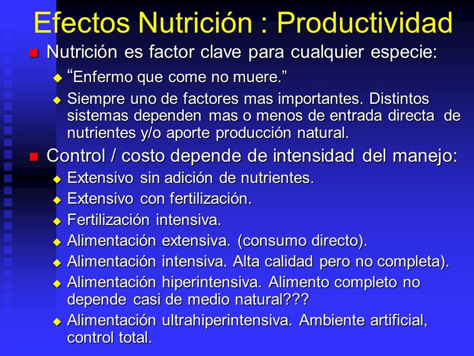 Efectos Nutrición : Productividad