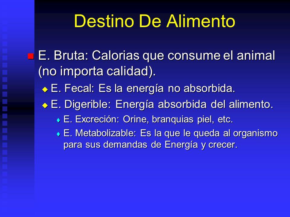 Destino De Alimento E. Bruta: Calorias que consume el animal (no importa calidad). E. Fecal: Es la energía no absorbida.