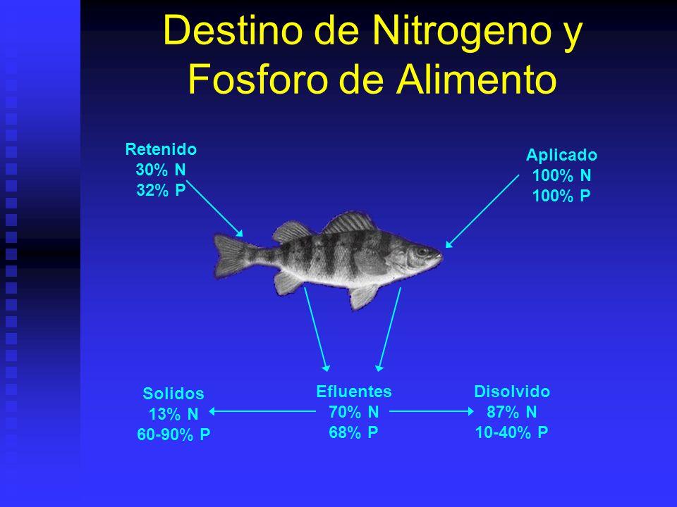 Destino de Nitrogeno y Fosforo de Alimento