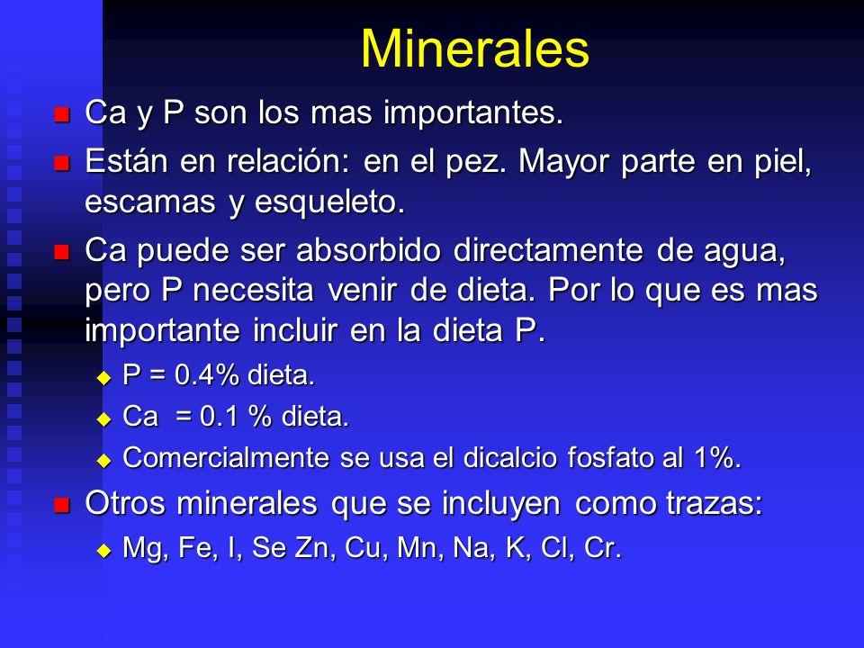 Minerales Ca y P son los mas importantes.