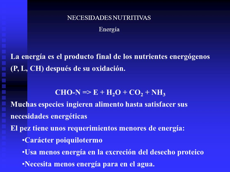 CHO-N => E + H2O + CO2 + NH3