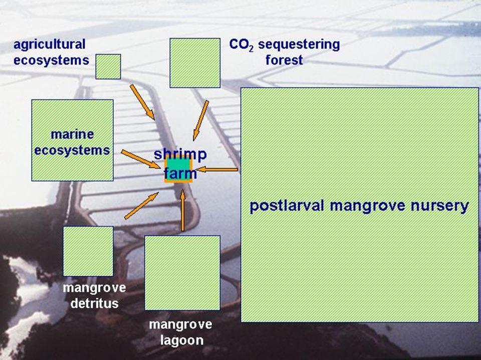 « ecological footprint » concept voor het bepalen van de impakt van
