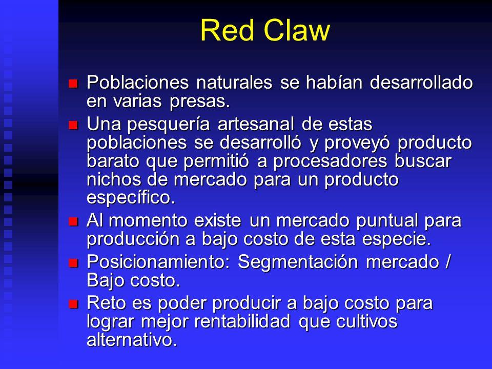 Red Claw Poblaciones naturales se habían desarrollado en varias presas.