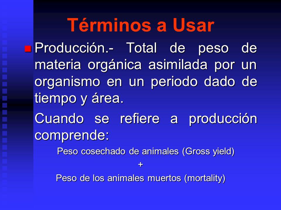 Términos a Usar Producción.- Total de peso de materia orgánica asimilada por un organismo en un periodo dado de tiempo y área.