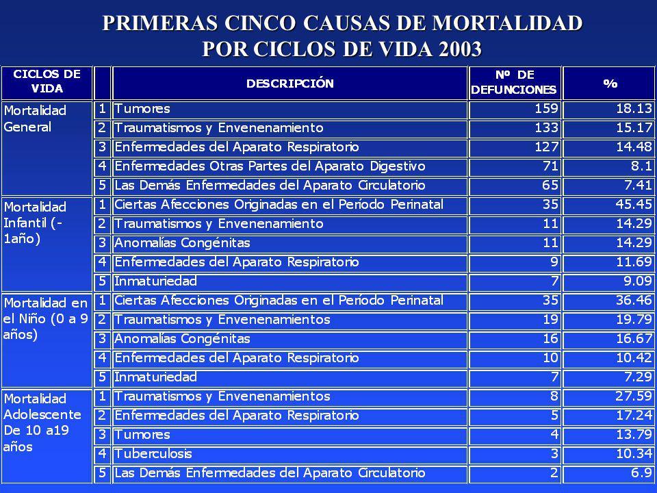 PRIMERAS CINCO CAUSAS DE MORTALIDAD POR CICLOS DE VIDA 2003