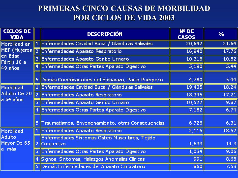 PRIMERAS CINCO CAUSAS DE MORBILIDAD POR CICLOS DE VIDA 2003