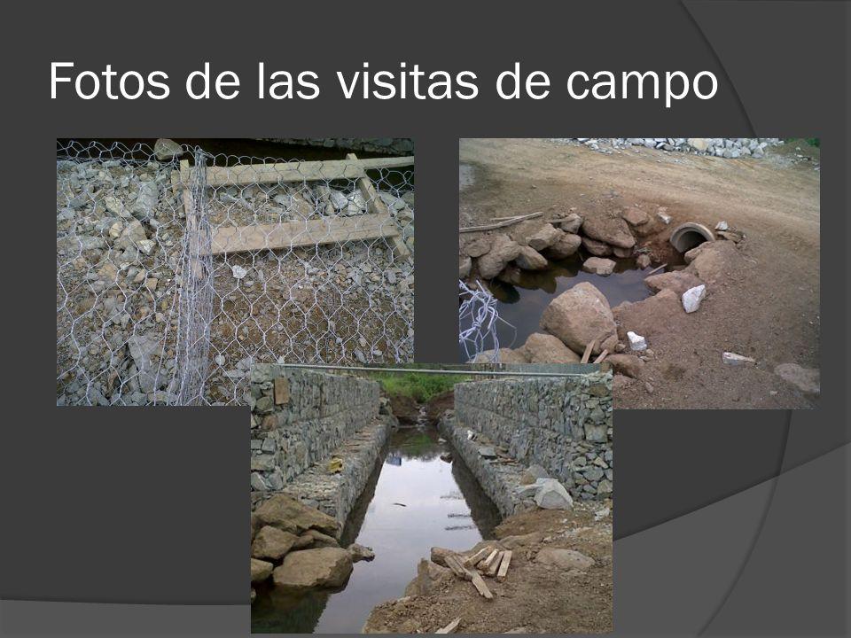 Fotos de las visitas de campo