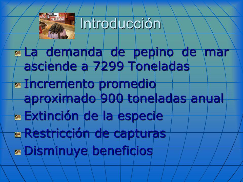 Introducción La demanda de pepino de mar asciende a 7299 Toneladas