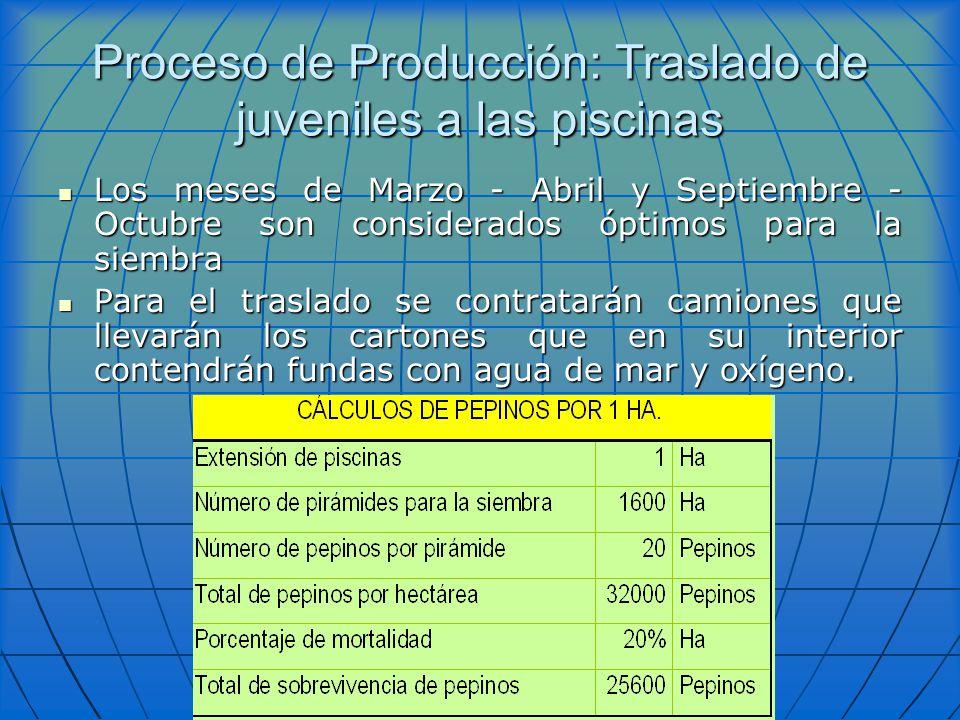 Proceso de Producción: Traslado de juveniles a las piscinas