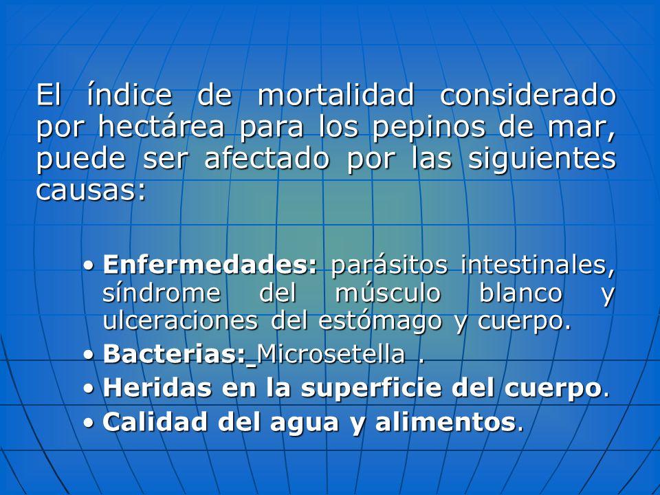 El índice de mortalidad considerado por hectárea para los pepinos de mar, puede ser afectado por las siguientes causas: