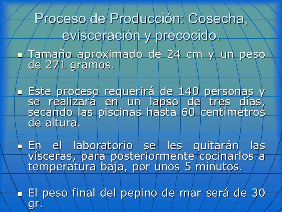 Proceso de Producción: Cosecha, evisceración y precocido.