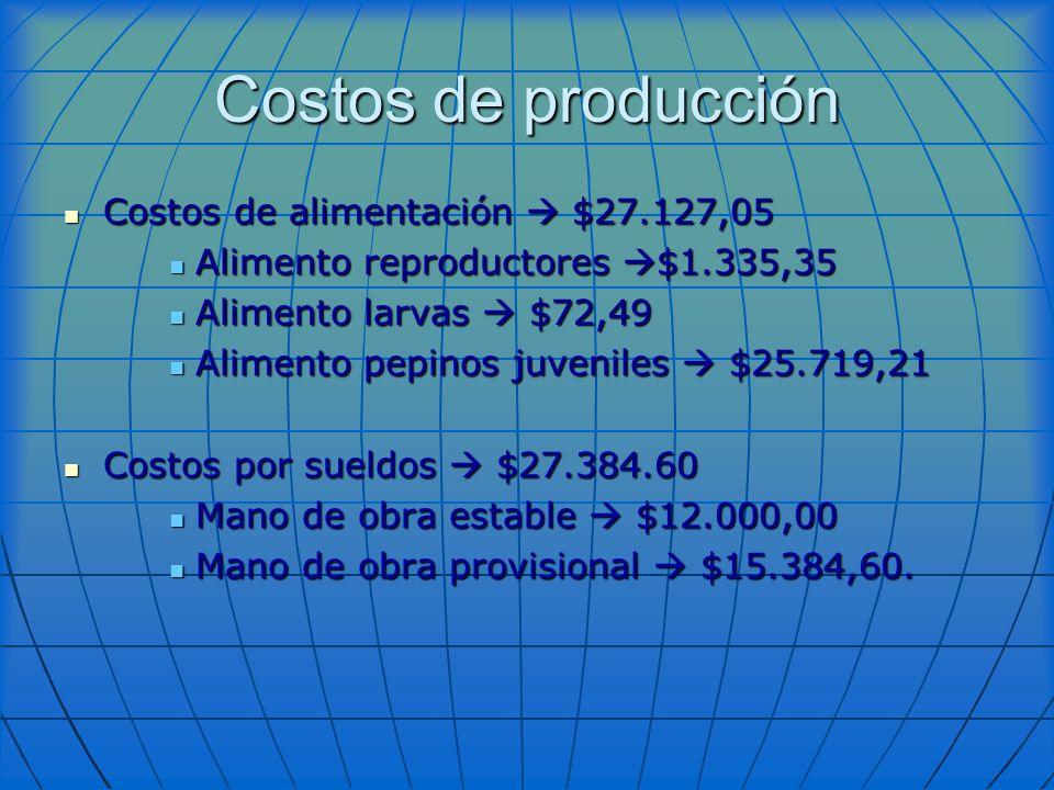 Costos de producción Costos de alimentación  $27.127,05