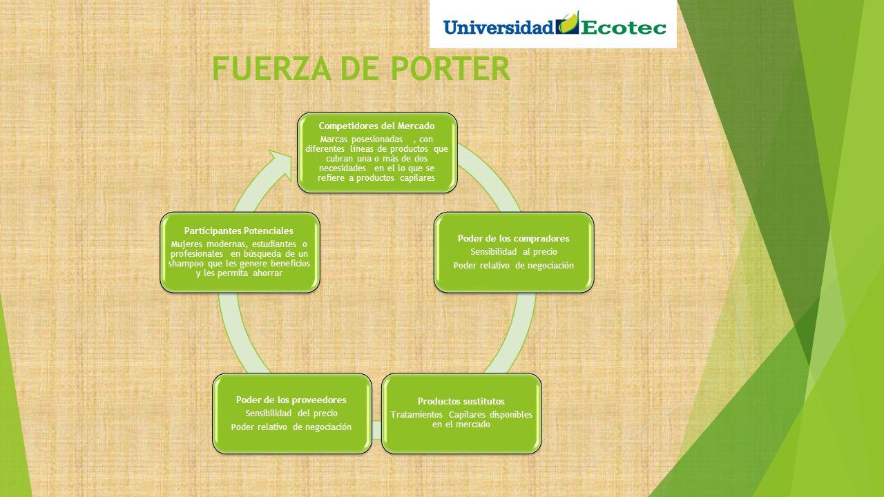 FUERZA DE PORTER Competidores del Mercado