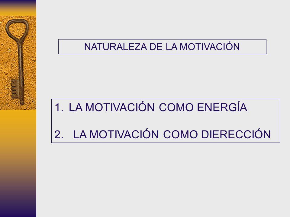 NATURALEZA DE LA MOTIVACIÓN