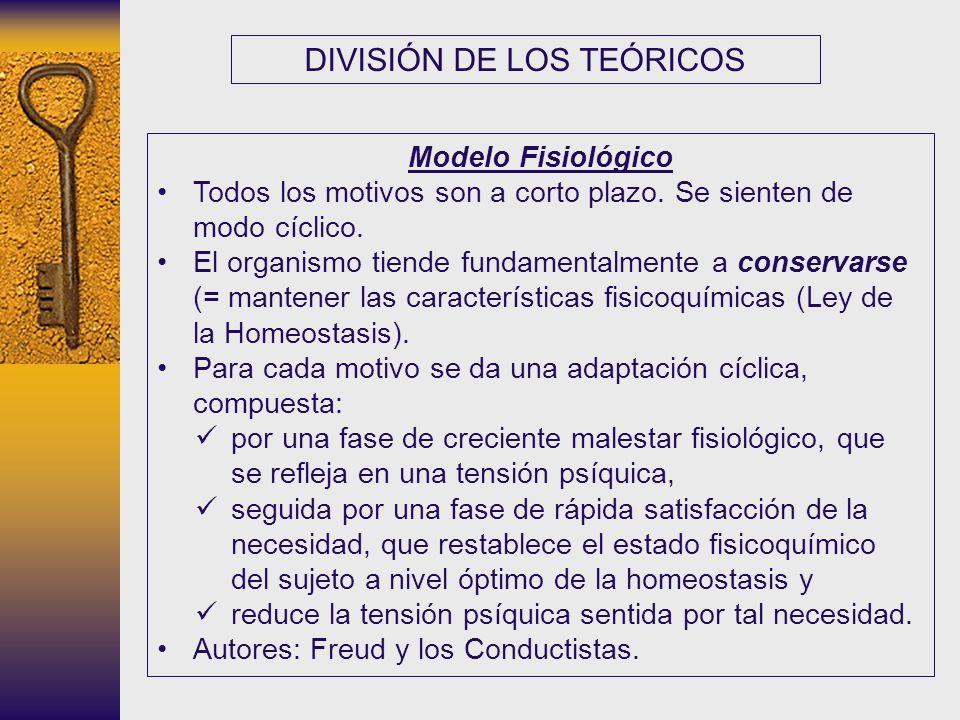 DIVISIÓN DE LOS TEÓRICOS