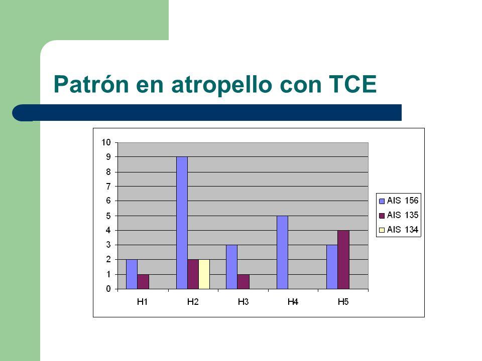 Patrón en atropello con TCE