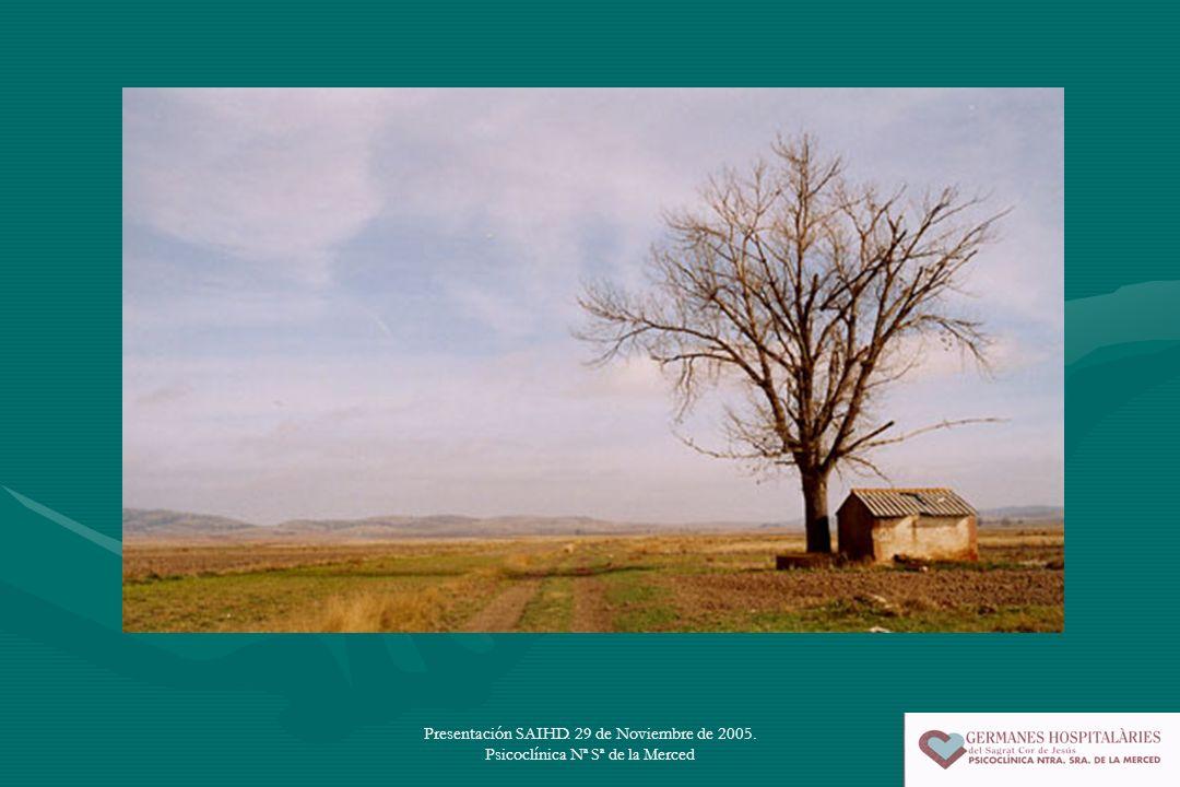 Presentación SAIHD. 29 de Noviembre de 2005