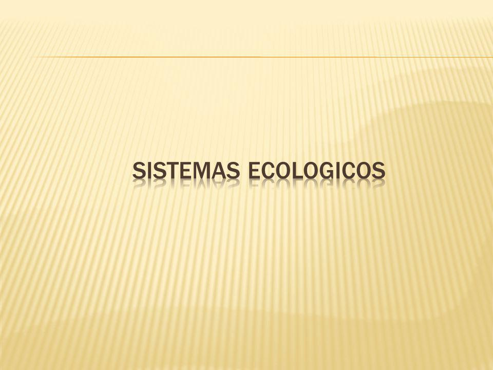 SISTEMAS ECOLOGICOS