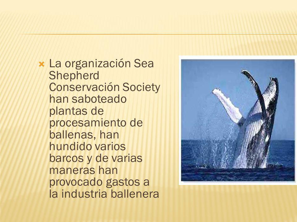 La organización Sea Shepherd Conservación Society han saboteado plantas de procesamiento de ballenas, han hundido varios barcos y de varias maneras han provocado gastos a la industria ballenera