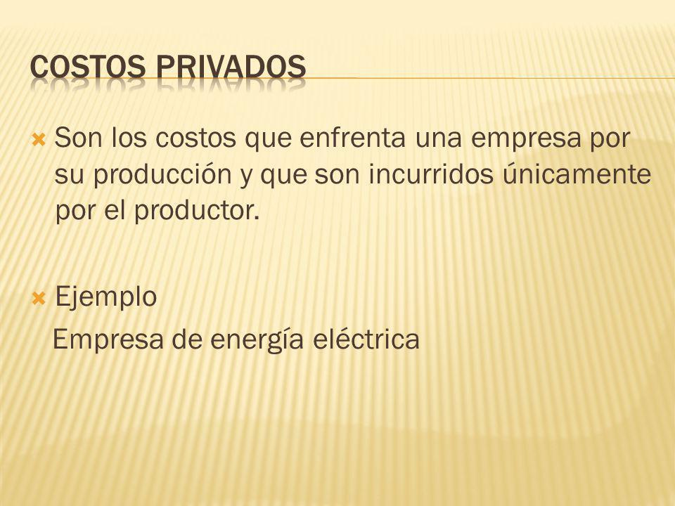 COSTOS PRIVADOS Son los costos que enfrenta una empresa por su producción y que son incurridos únicamente por el productor.