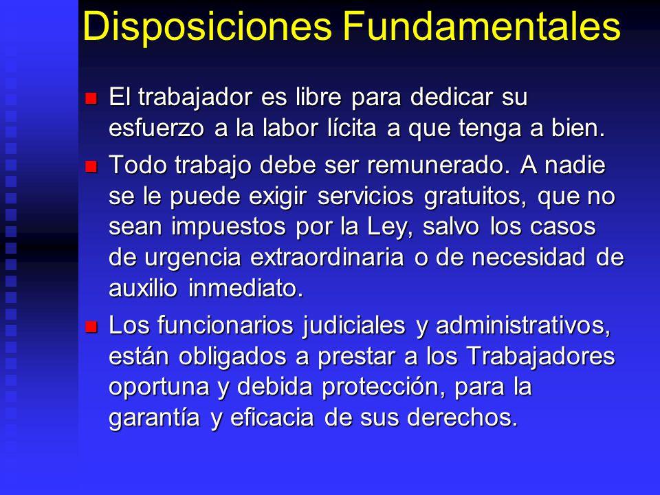 Disposiciones Fundamentales