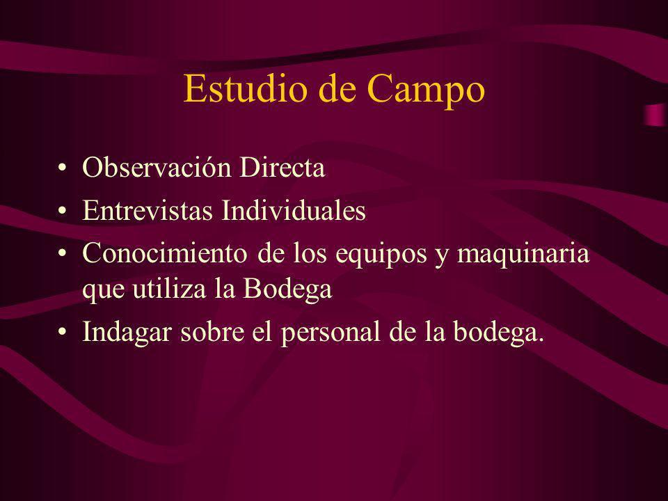 Estudio de Campo Observación Directa Entrevistas Individuales