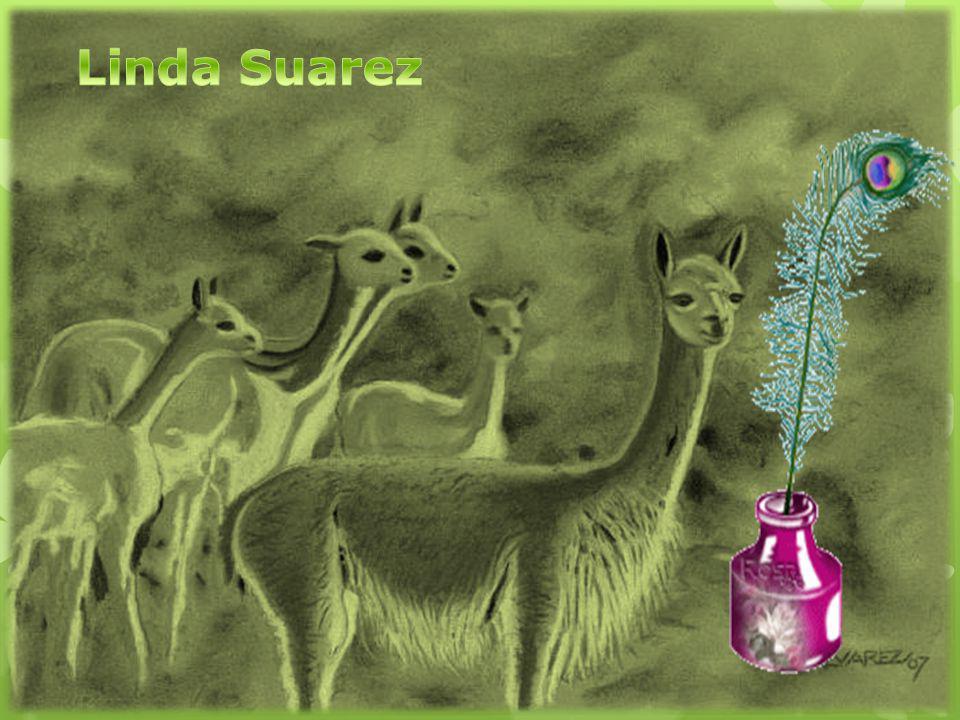 Linda Suarez