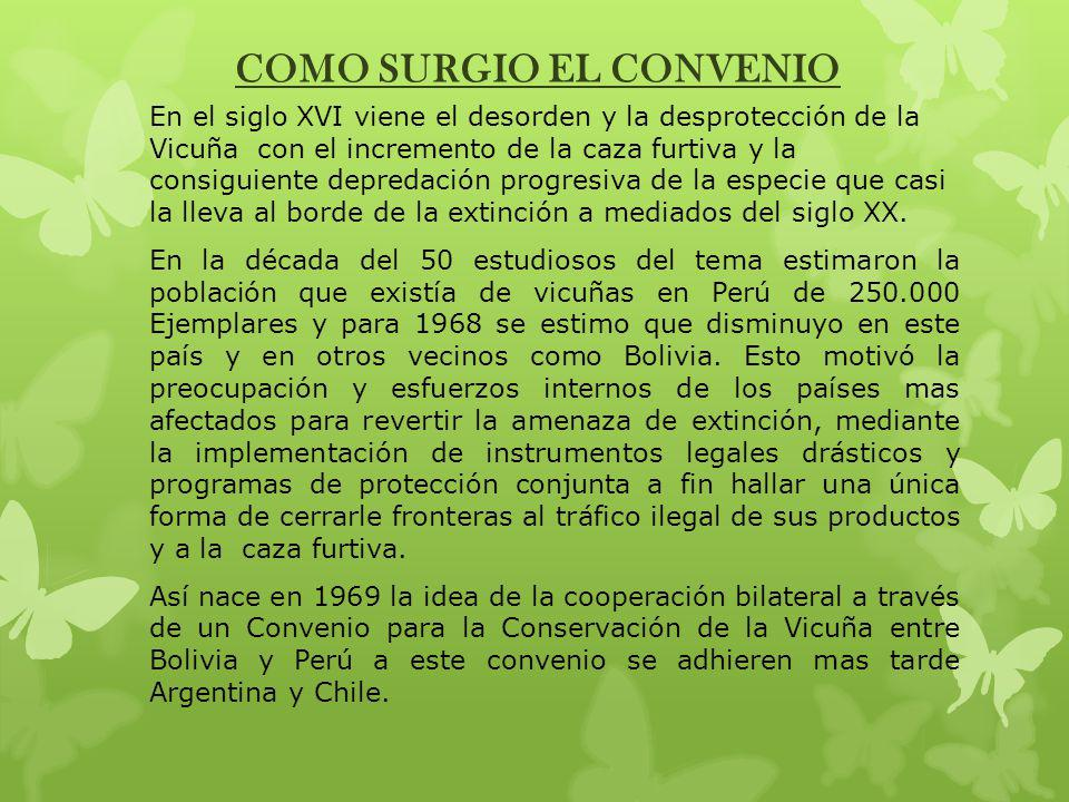 COMO SURGIO EL CONVENIO