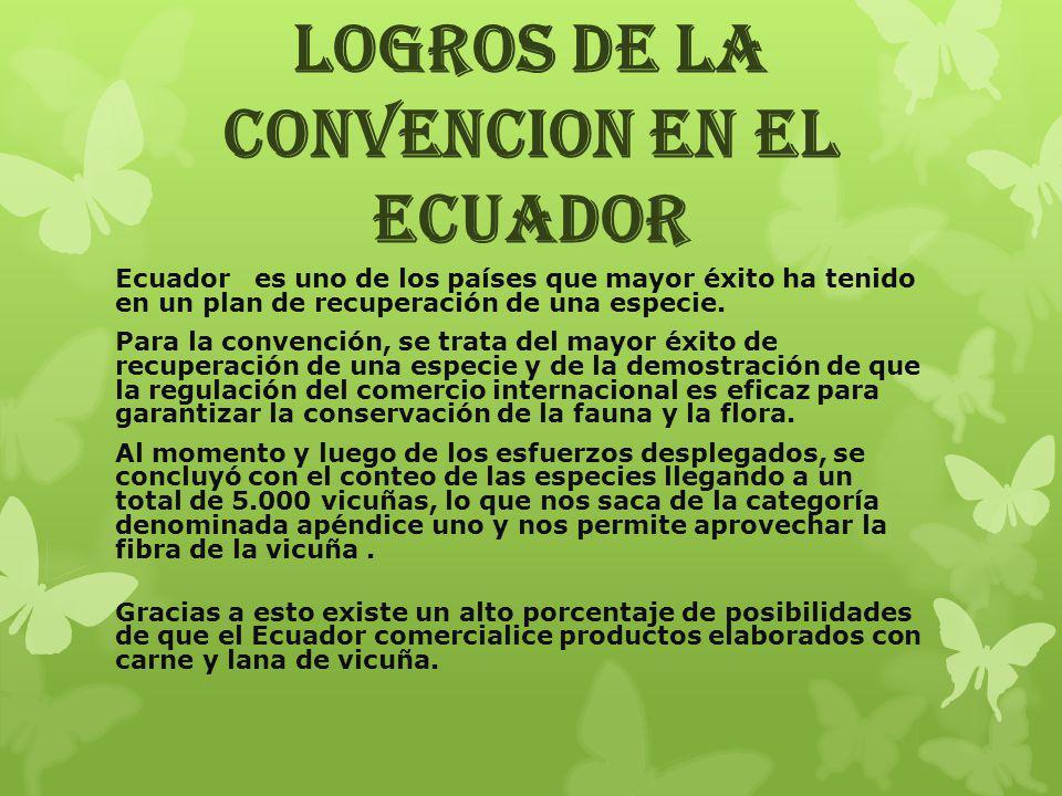 LOGROS DE LA CONVENCION EN EL ECUADOR