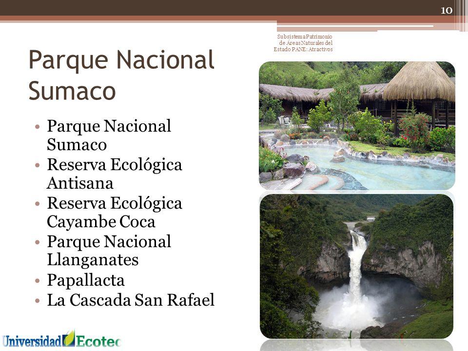 Parque Nacional Sumaco